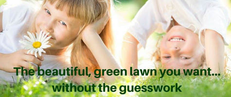 Going Organic is a great way to know that your kids, pets & family are safe. Rutland Turf Care has these options. We also have organic Flea/tick & mosquito control products
