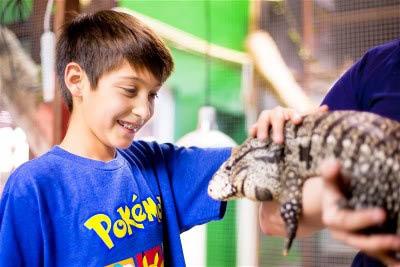 Austin-Aquarium-Boy-With-Tegu
