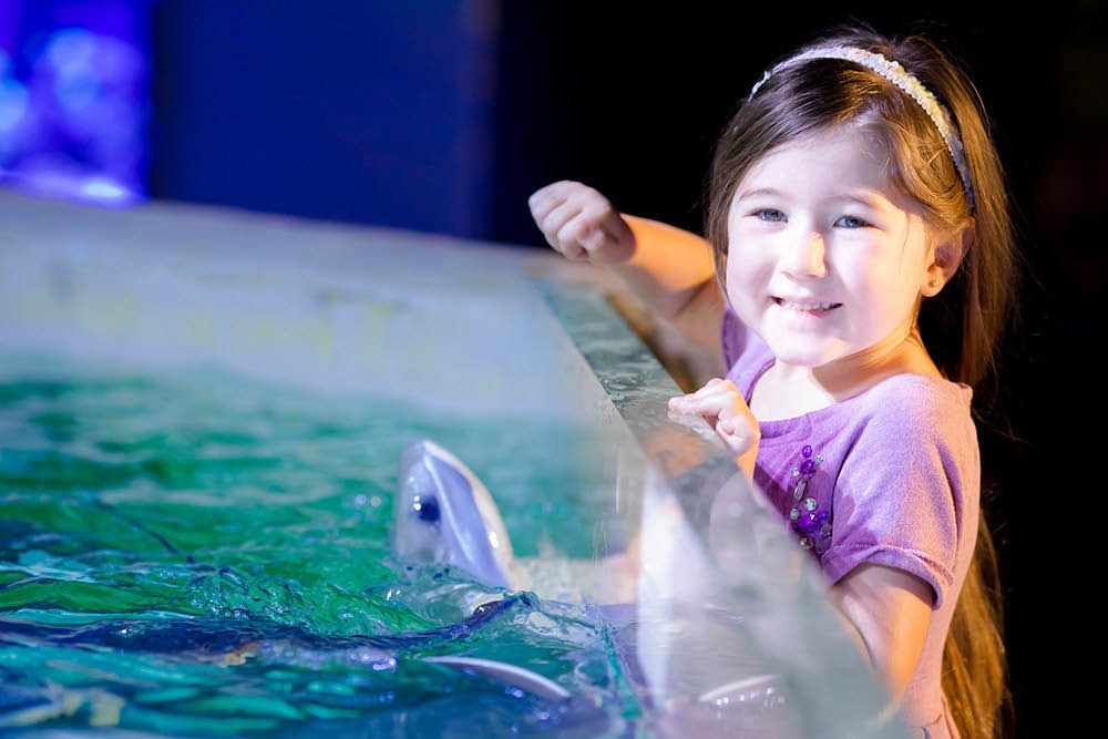San-Antonio-Aquarium-Girl-With-Stingray