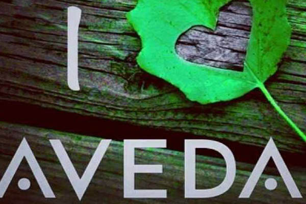 Picture of a Aveda logo that is sold at Salon on Sixth Hair Salon near Racine, WI