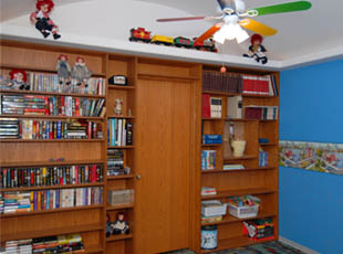 Toy Box Bookshelf filled with books and toys