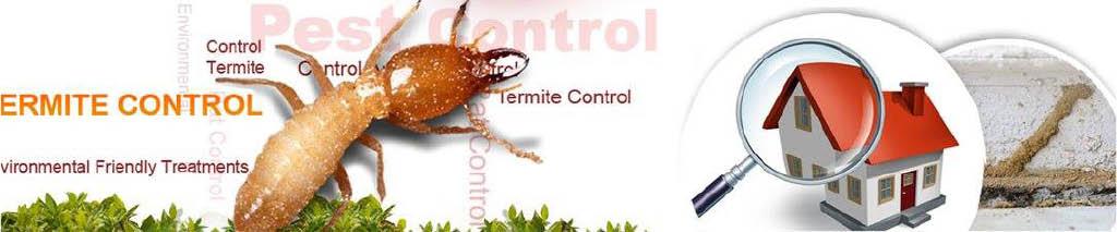termite control florida