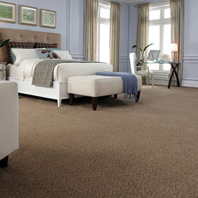 Smart Carpet  and Flooring!