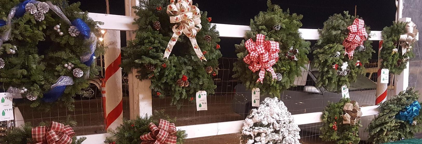 snowy pines christmas trees long beach ca christmas tree coupons near me