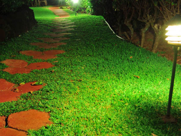 Softscape Outdoor Lighting for your office