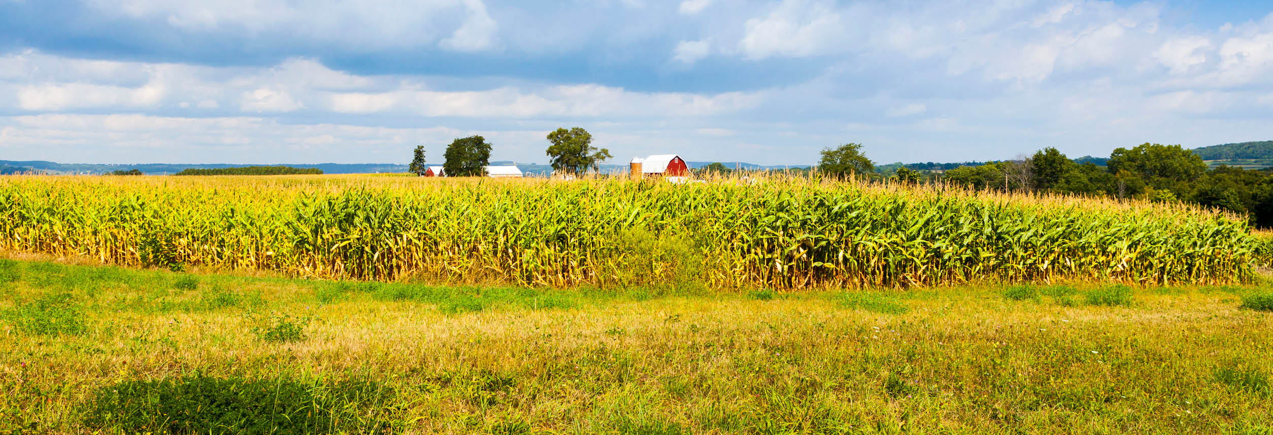 Southern States in Mount Airy Maryland farm photo