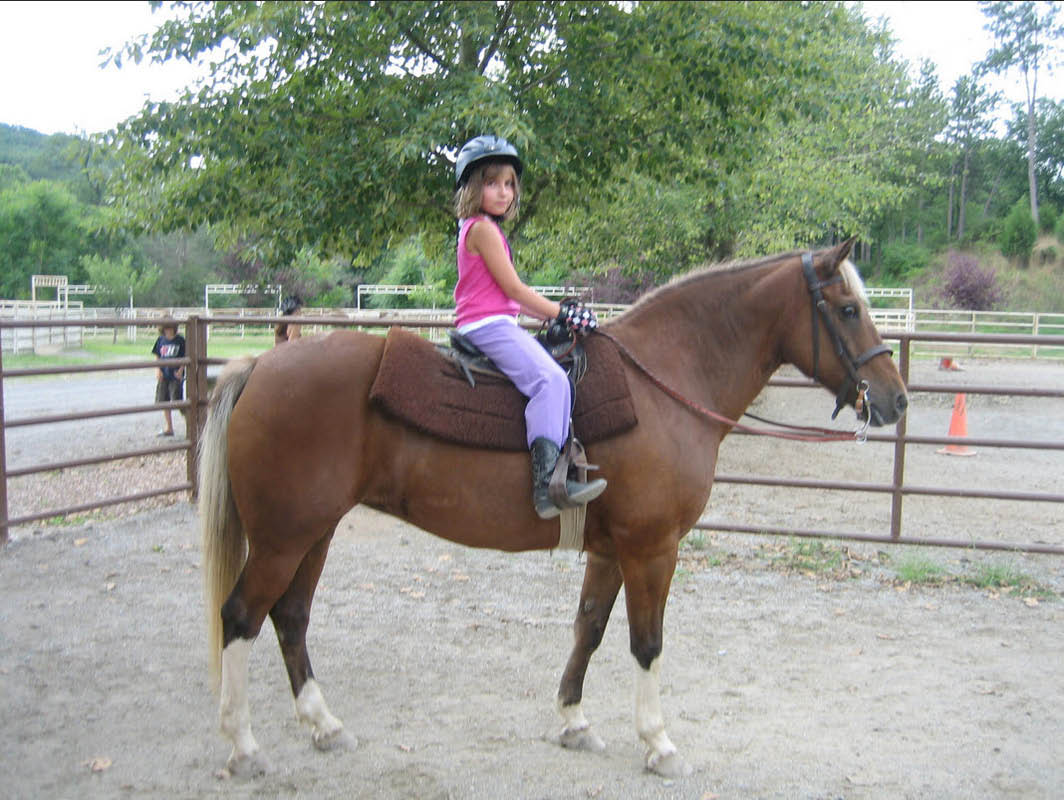 Horseback riding lessons from Spring Valley Equestrian Center in Newton NJ