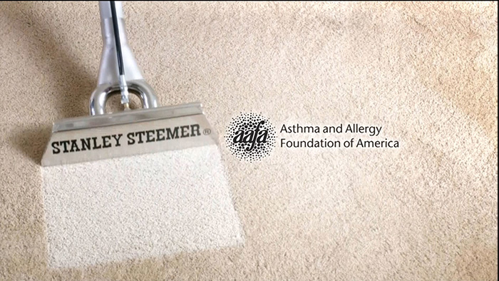 dirty carpet being steamed cleaned by Stanley Steemer in Santa Rosa, CA