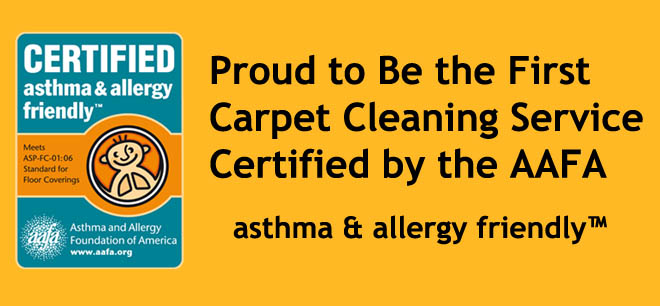 Certified carpet cleaning service