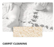 carpet cleaning companies in Madison, WI