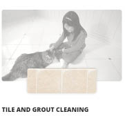 tile and grout cleaning; grout cleaner