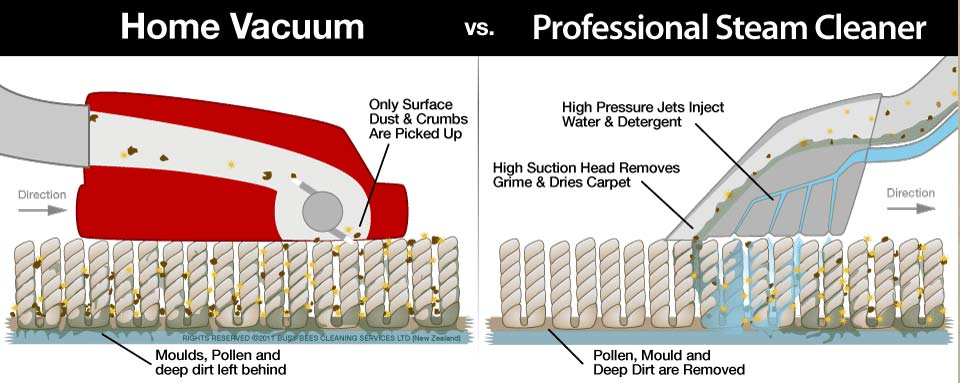 Traditional home vacuuming v. professional steam cleaning visual