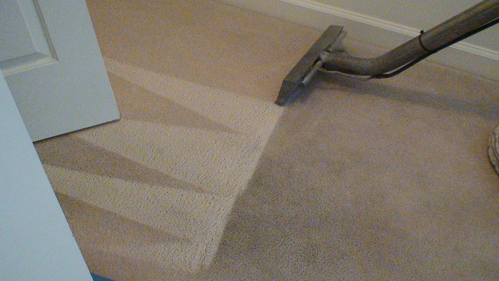 Carpet before and after Ecosteam Cleaning - see the difference in color