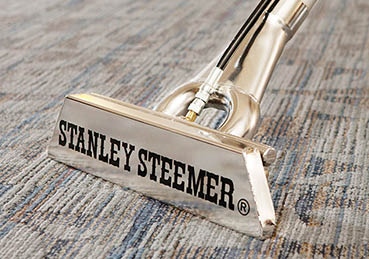 stanley steemer water extraction northern Kentucky