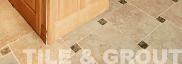 Stanley Steemer removes dirt mold with tile and grout cleaning services