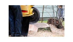 stump grinding services; AAA Tree Service Northern Virginia