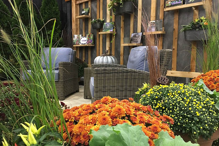 Suburban Indy Shows, Westfield, IN, Interior and Outdoor Living, Antique Appraisals