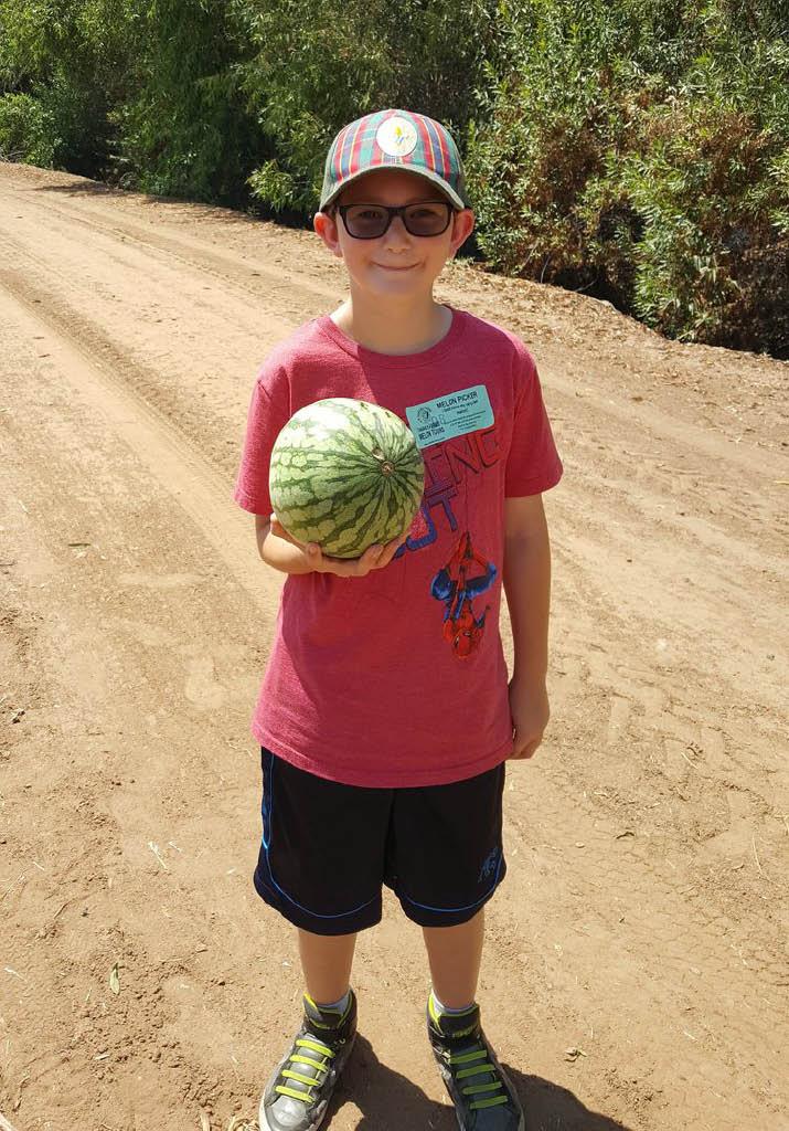 watermelon tours orange county ca farm tours orange county ca