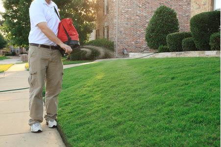 Tanner Pest Control coupons, Lawn treatment coupons, Pest control Salt Lake City coupons.