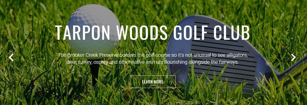 Golf Tee Time save on golf save at pro shop golf lessons special events at Tarpon woods