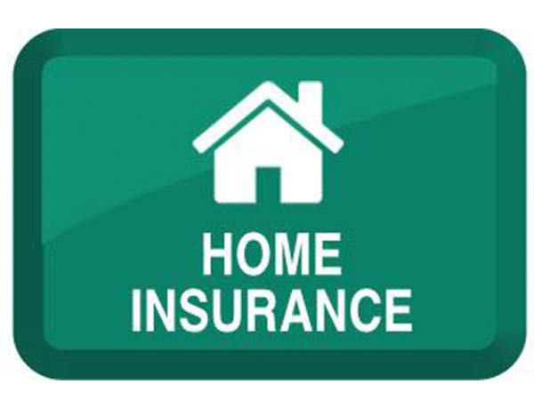 Tejal Dhruve CPA home insurance