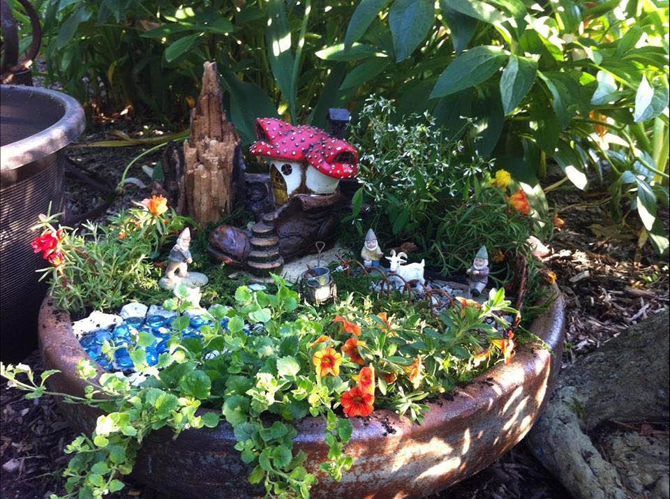 Buy perennial flowers near Joliet