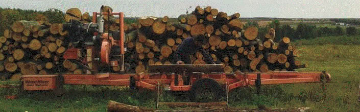 Picture of wood cut from trees at Timber Beast Tree Service in Oxford, MI