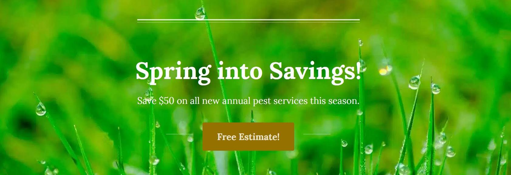 mosquito pest control, bedbugs, termites, ants, carpenter bees, mouse, mice, bats, rodents, bees