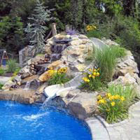 Poolscape with waterfall and plants  in Milton, NY