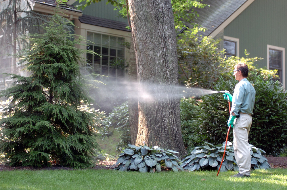 Pest control services from Top Turf near Five Forks, SC