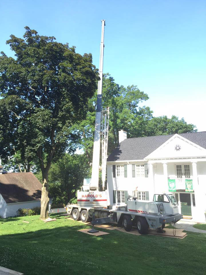 Tree Corp. uses an appropriate size crane for the specific job
