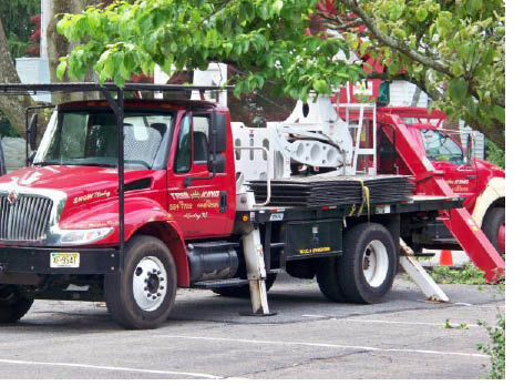 Machinery used for tree removal by Tree King in Landing NJ
