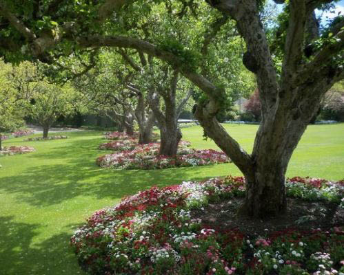 Greenleaf can give you beautiful flower gardens, trees, shrubs and rolling lawns