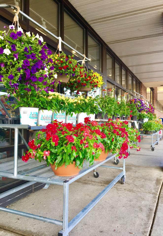 prairieside-kenosha-true-value-floral