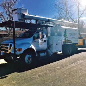 tall timbers tree & shrub services truck
