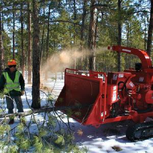 tree removal company colorado