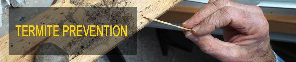 Termite prevention service
