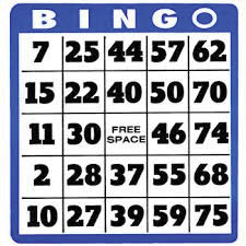 bingo, fun, waynesboro, lioness, annual