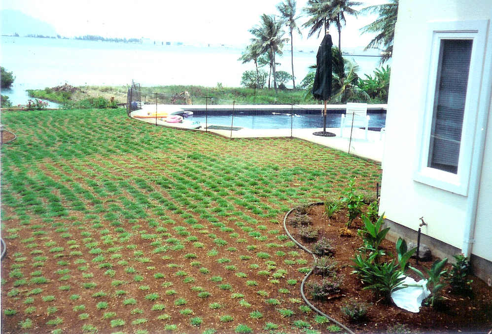 Lawn care and landscape design near Waimanalo