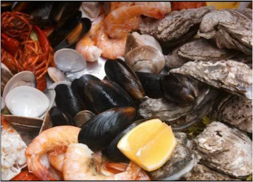 marina, beach front, seafood, crabs, shrimp, oysters, buffet; lusby, md