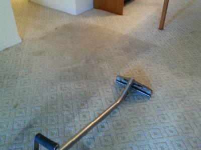 carpet cleaning milton fl