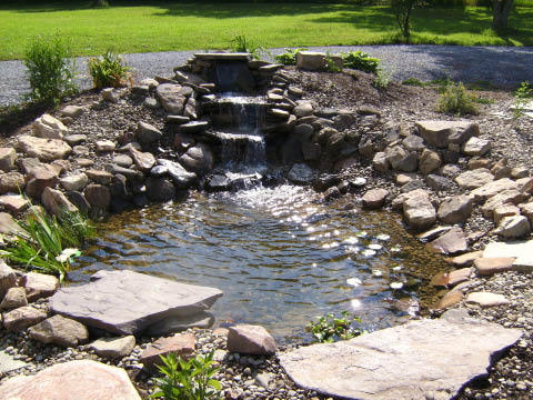 Waterfall and pond built in a backyard