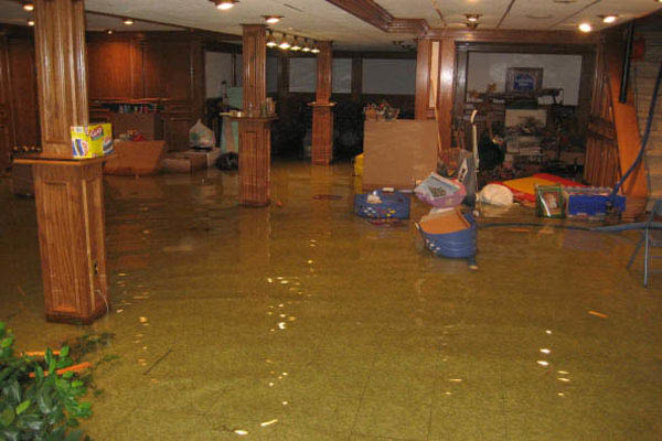emergency water removal  basement water removal coupon rochester ny Stanley Steemer Emergency Flood & Water Removal