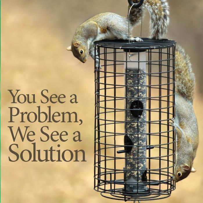 Squirrel-Solutions