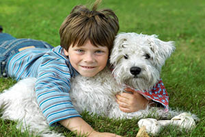 Child on grass with puppy and bone
