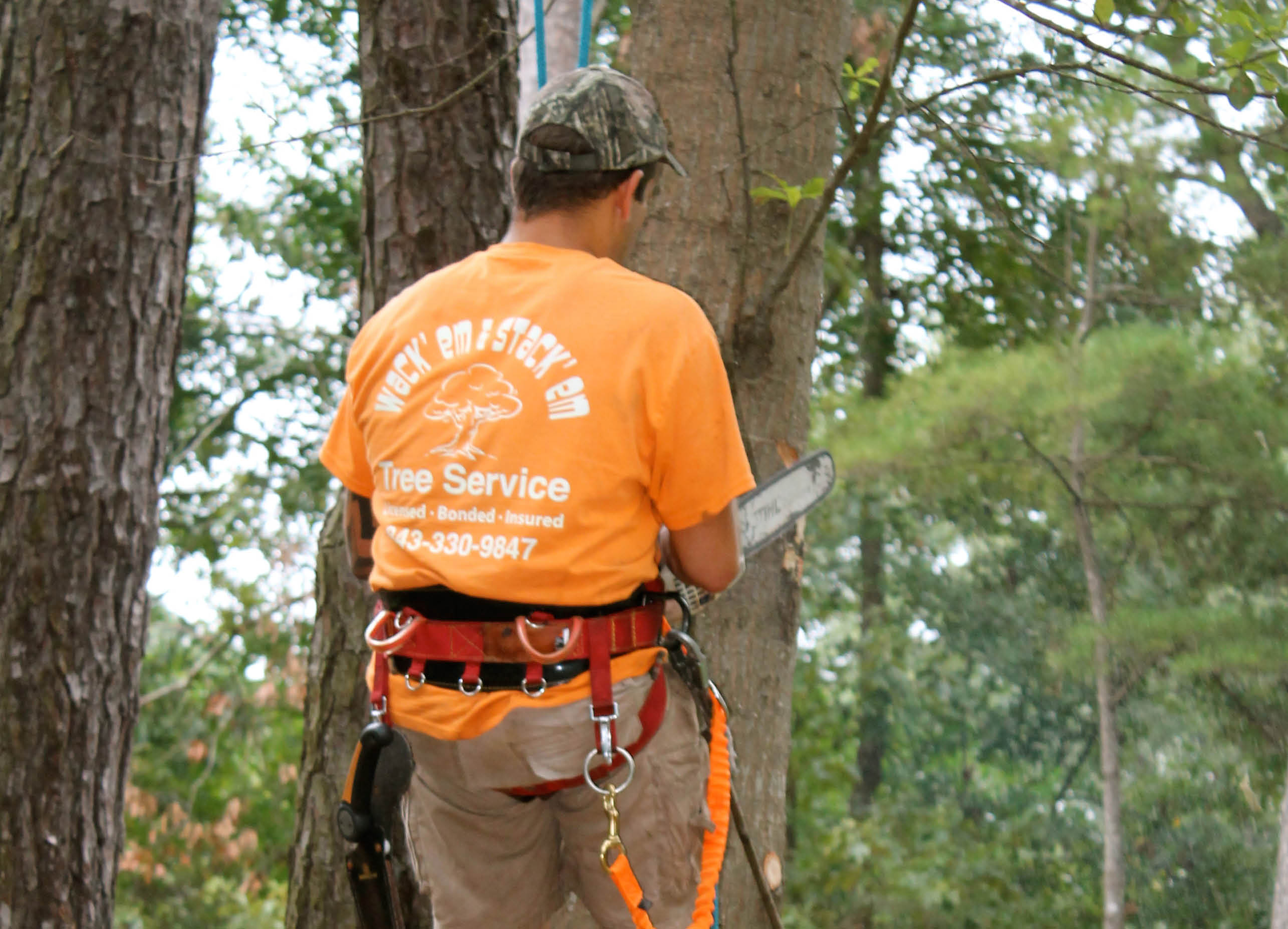 Tree removal and pruning near Goose Creek
