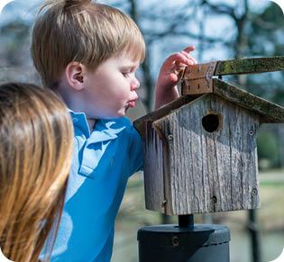 kids, birdhouse; wild birds unlimited located in arlington, texas