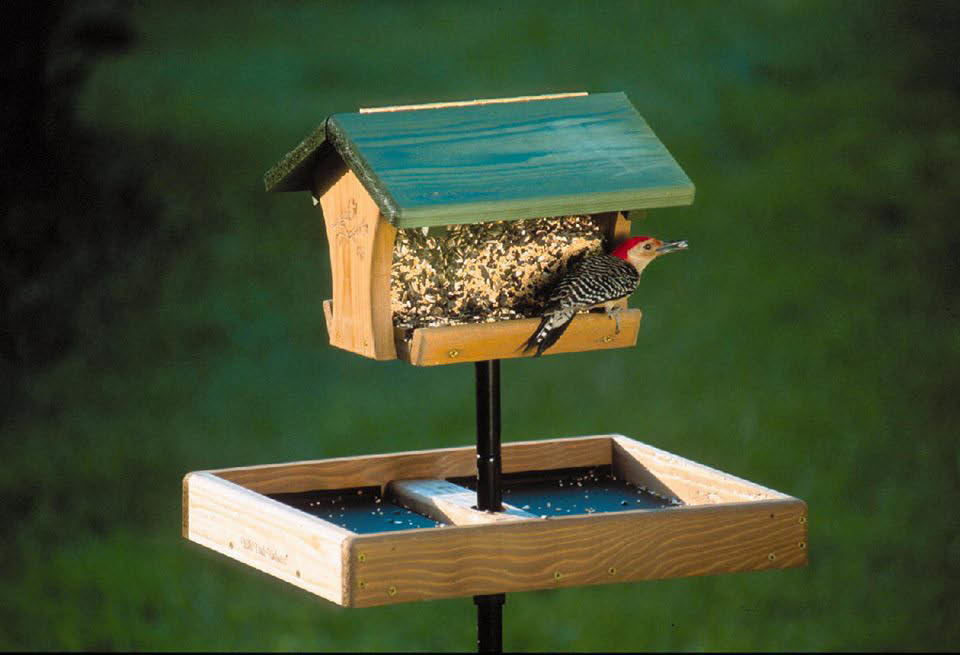 wild birds unlimited bird seed bird feeders florence kentucky foundational feeder
