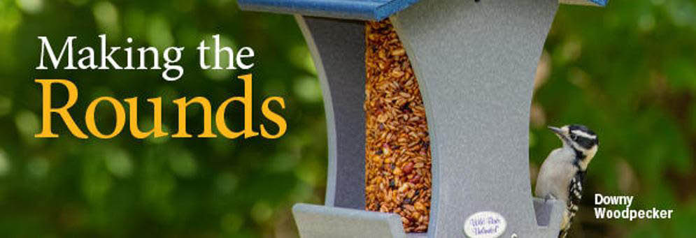 Wild Birds Unlimited in Novi, MI