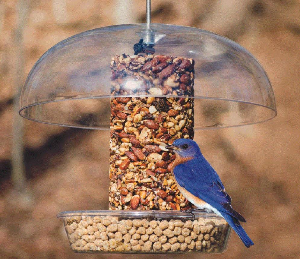 Different types of bird food at Wild Birds Unlimited in Novi, MI